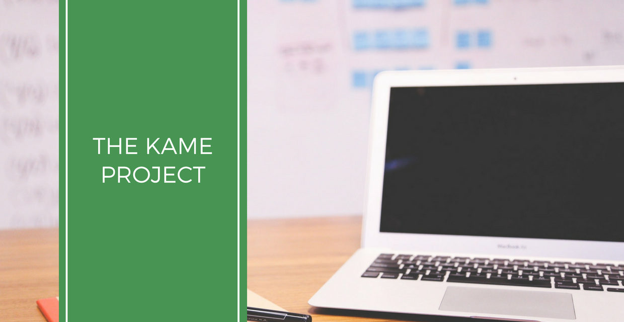 The Kame Project